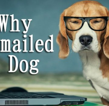 why_emailed_dog