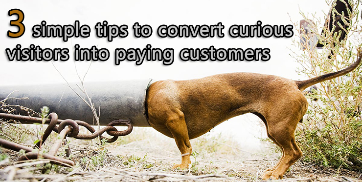 simple_tips_convert_curious_visitors_paying_customers