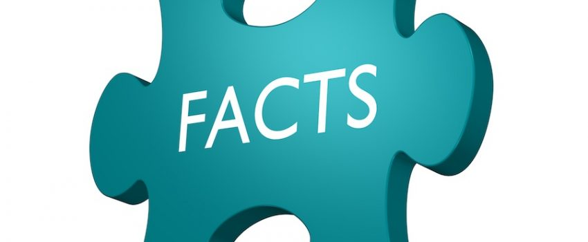 facts puzzle illustration